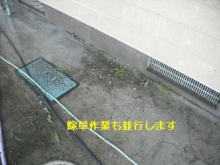 f0031037_2058558.jpg