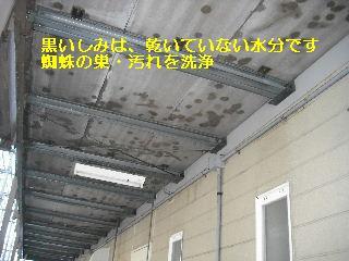 f0031037_2102919.jpg
