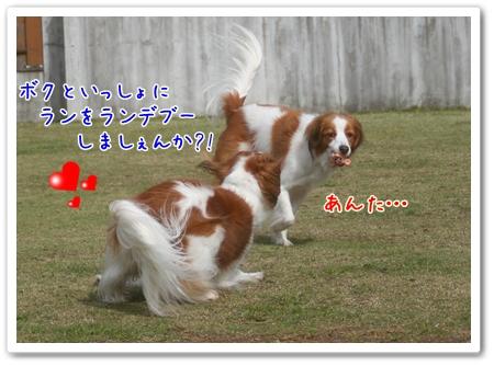 d0013149_134987.jpg