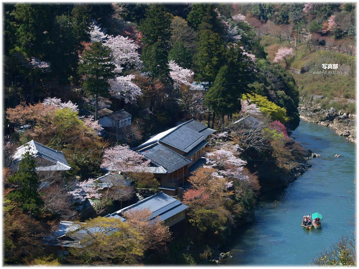 京都 嵐山 桜_f0021869_174878.jpg