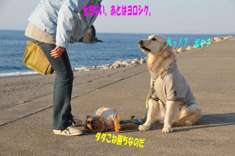 d0043478_13203649.jpg