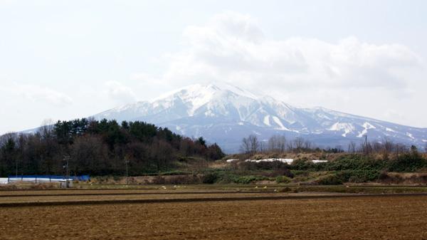 岩木山、湯段地区の水芭蕉_a0136293_1510644.jpg