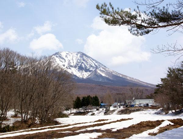 岩木山、湯段地区の水芭蕉_a0136293_15144291.jpg
