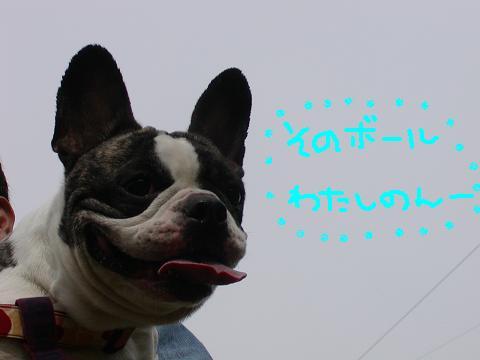 f0032507_9355581.jpg