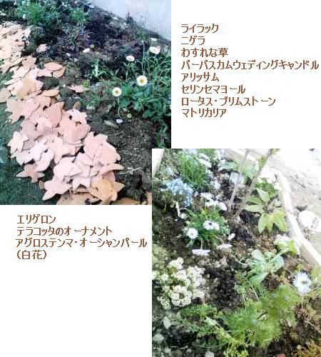f0113108_17201195.jpg