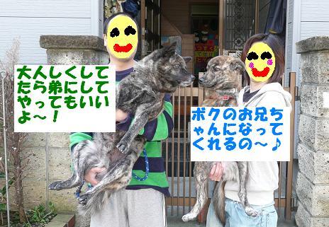 f0121712_20565718.jpg