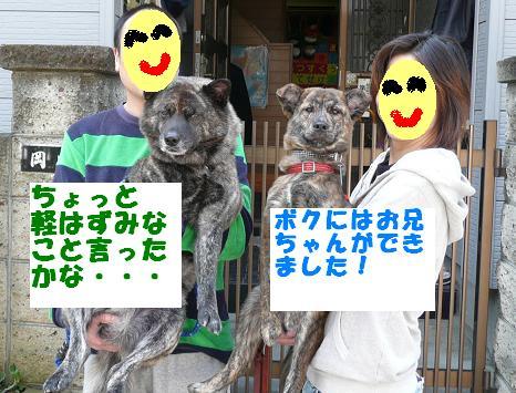 f0121712_219364.jpg