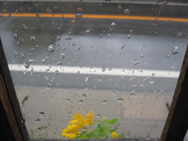 雨粒_c0200314_13433132.jpg