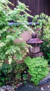 4月27日 しとしと雨です_b0121719_16593911.jpg