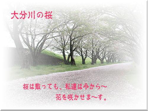 d0155321_18493165.jpg