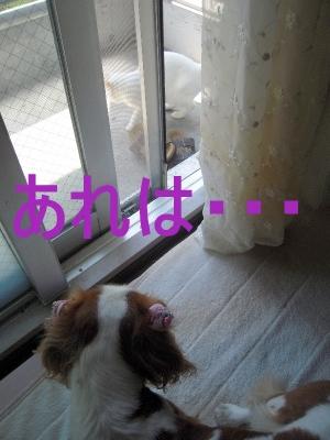 f0214121_21262091.jpg