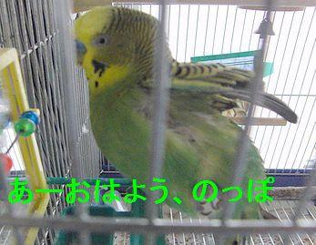 f0196665_23531021.jpg