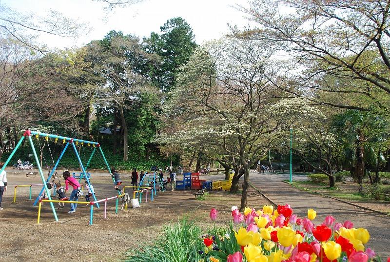 八重桜など_c0187781_0171232.jpg