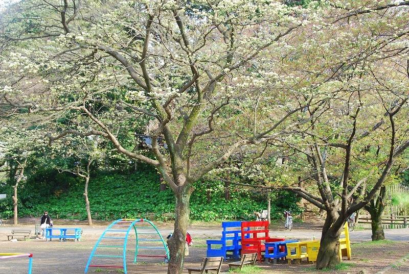 八重桜など_c0187781_0181395.jpg