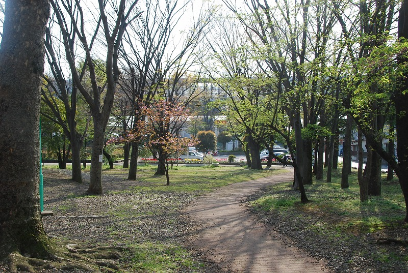 八重桜など_c0187781_0183146.jpg
