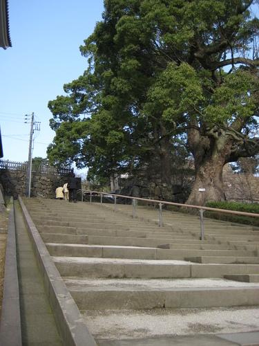 城下町を歩く(3)松江城_c0013687_12273844.jpg