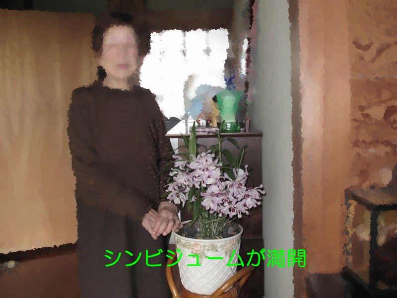 f0059498_16562940.jpg