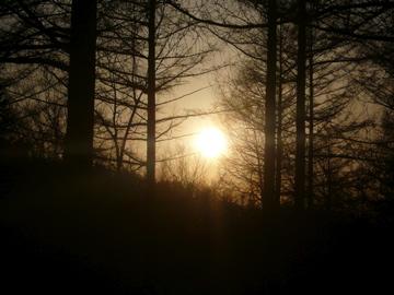 皆空窯 かまぐれの日々_b0185013_21305657.jpg