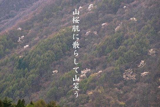 山笑う_e0099713_20571226.jpg