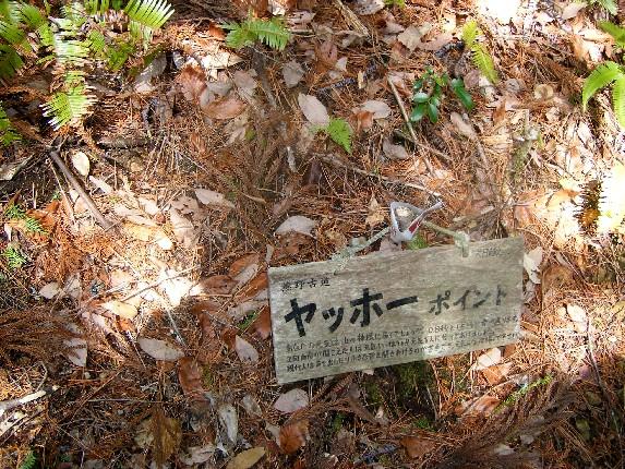 熊野古道_b0093754_011120.jpg