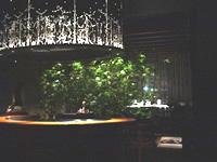 東京 「XEX TOKYO」に行く_f0232060_1075493.jpg