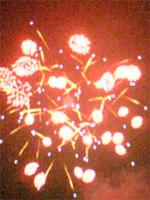 昭和記念公園花火大会 _f0232060_11575948.jpg