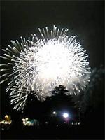 昭和記念公園花火大会 _f0232060_11581714.jpg