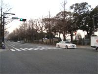 横浜中華街へ行く。 _f0232060_17333878.jpg