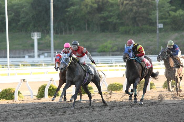 2010年4月24日(土) 高知競馬 4R 3歳-1_a0077663_13351856.jpg