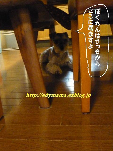 f0157373_2012998.jpg