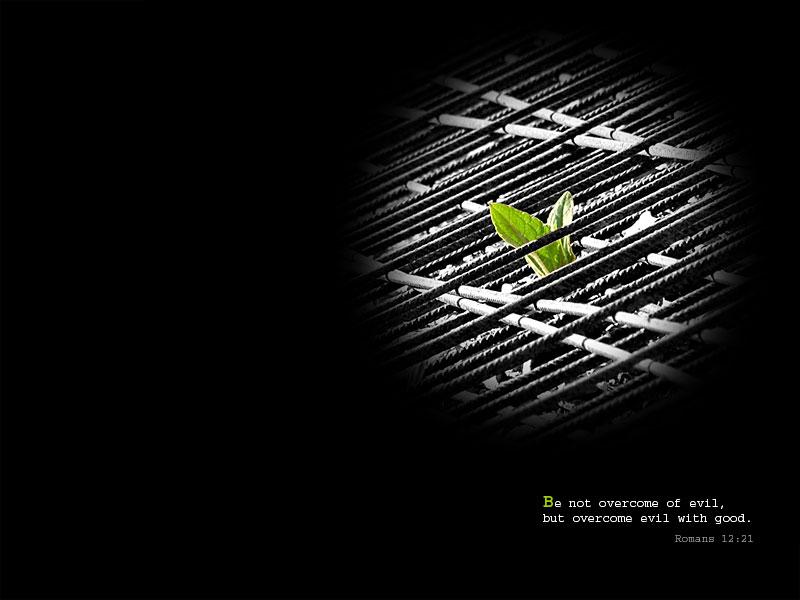 4月28日Ⅰ歴代19-21章『誘惑の危険、悔い改め』_d0155777_126274.jpg