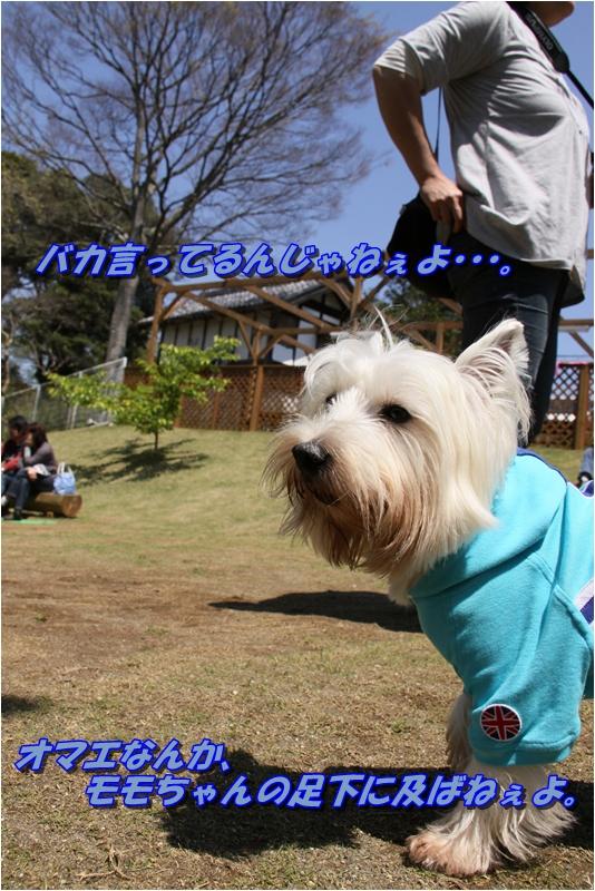 f0223295_2124687.jpg