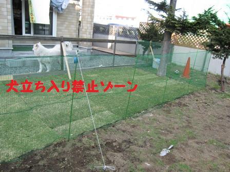 f0212597_1156441.jpg