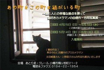 あの町*この町*猫がいる町 ~クレールさんにて写真展_c0125899_1311123.jpg