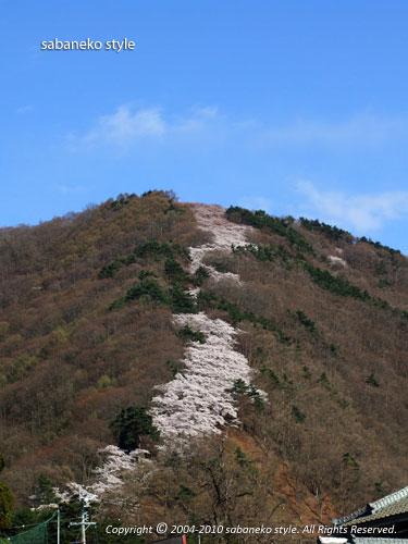 光城山(ひかるじょうやま)_b0029706_200769.jpg
