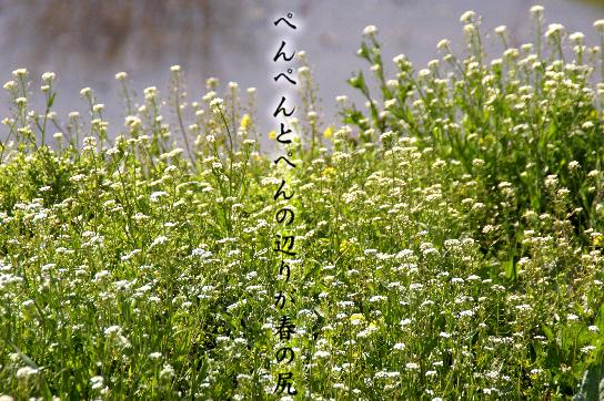 春の尻_e0099713_20411796.jpg