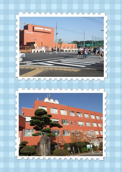 f0147025_201129.jpg