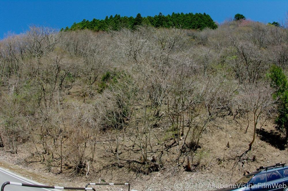 2010秩父全日本選手権大会遠征日記VOL2:4月25日(日)大会当日の風景_b0065730_12165488.jpg