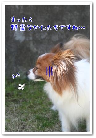 d0013149_0425881.jpg