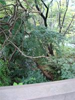「三鷹の森ジブリ美術館」へ行く。 _f0232060_1835249.jpg