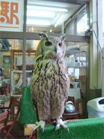 「三鷹の森ジブリ美術館」へ行く。 _f0232060_18353714.jpg