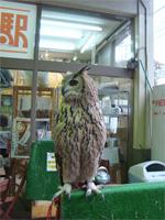 「三鷹の森ジブリ美術館」へ行く。 _f0232060_18354572.jpg