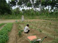 セブ島へ行く。⑥ ~Puchraの自家菜園~_f0232060_21373476.jpg
