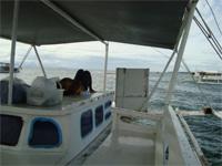 セブ島へ行く。⑩ ~海の孤島でシュノーケリング 前編~_f0232060_21473648.jpg