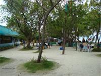 セブ島へ行く。⑪ ~海の孤島でシュノーケリング 後編~ _f0232060_2150467.jpg