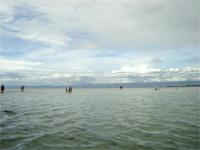 セブ島へ行く。⑪ ~海の孤島でシュノーケリング 後編~ _f0232060_2151103.jpg