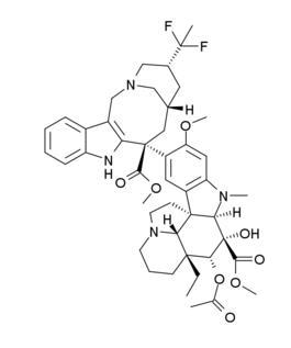 NSCLC IIIB/IV期において2nd-lineのvinflunineは、ドセタキセルに対して非劣性_e0156318_17284859.jpg