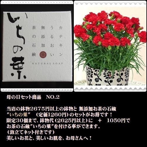 b0168089_2059452.jpg