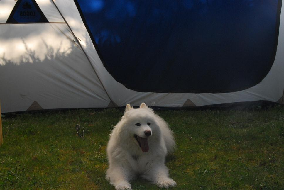 行ってきました! おくとろ公園キャンプ場 part3_a0049296_7243210.jpg