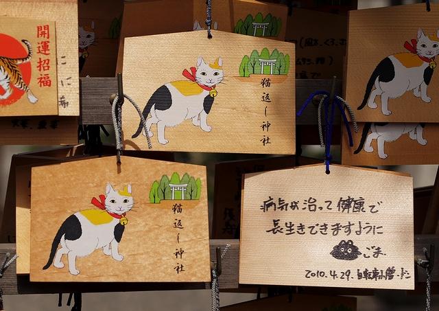猫返し神社_d0071596_11171048.jpg